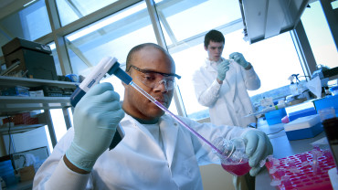 Graduate students work in the lab of Dr. Elizabeth Loboa
