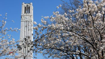 Belltower and blossoms on a Spring morning.