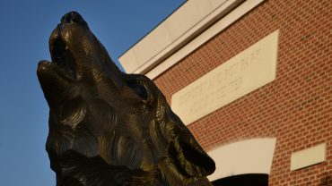 Wolf statue outside Park Alumni Center on Centennial Campus.