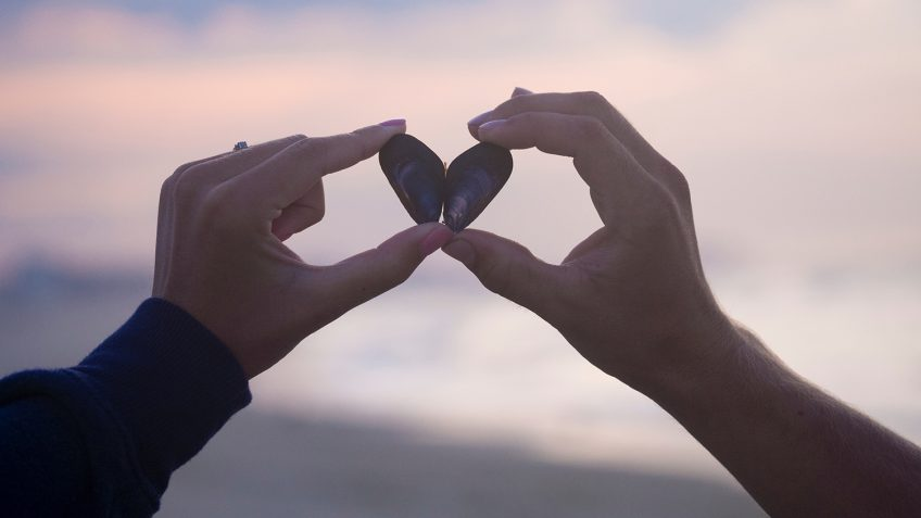 photo of two hands holding shells that make a heart.
