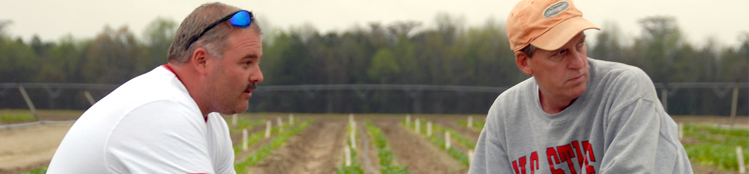 Education for Agricultural Professionals - Online and Distance Education