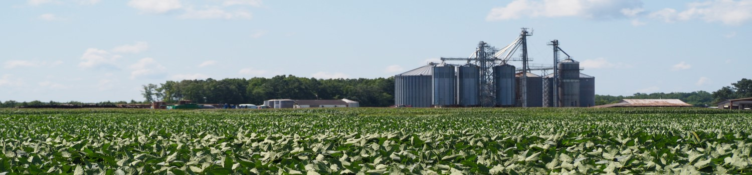 Regulatory Science in Agriculture - Online and Distance Education