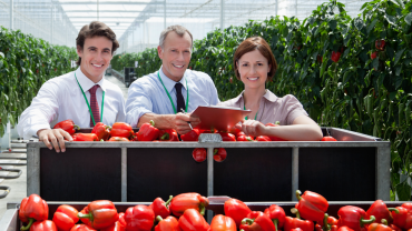 Agricultural Business Management - Online Program
